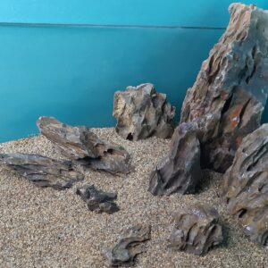 Камень Дракон